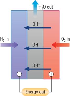 Hydrogen Fuel: Oxygen Hydrogen Fuel Cell